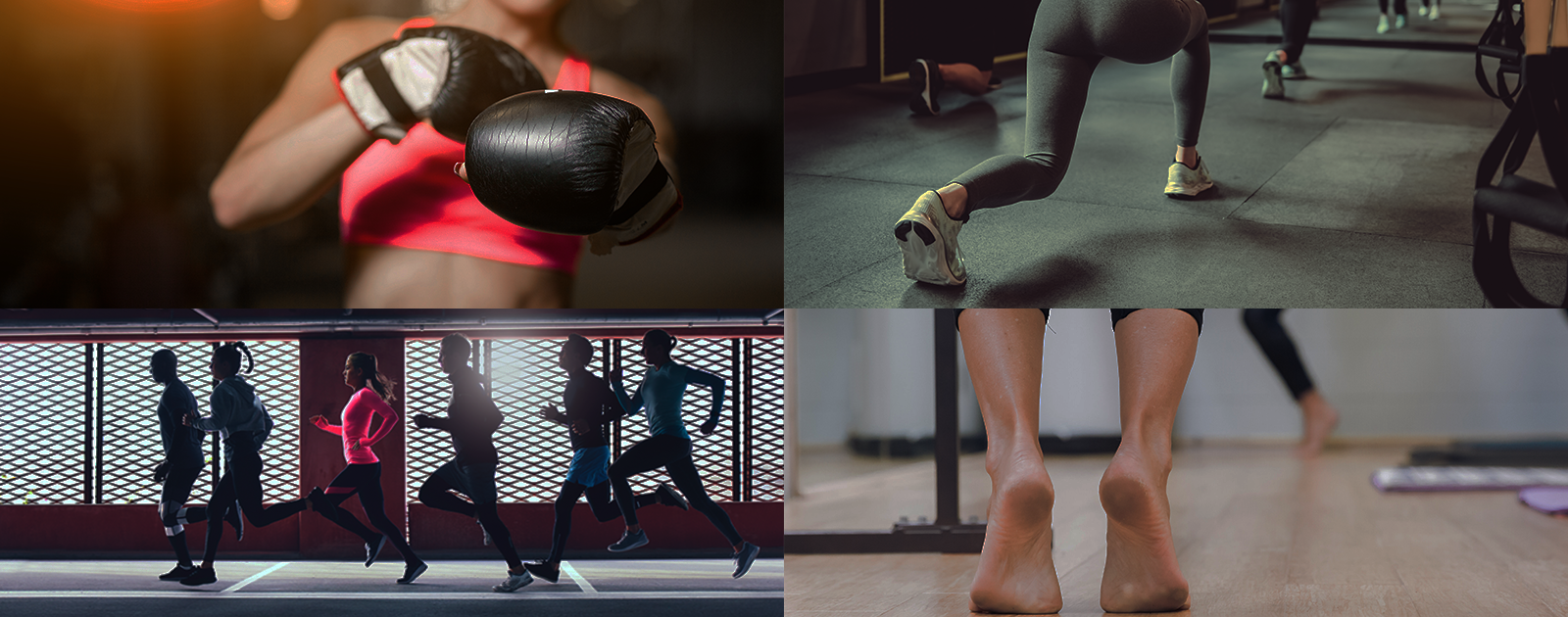 Boutique Fitness Trends: Everything You Need to Know